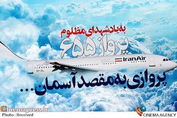 هواپیمای ایرباس ۶۵۵ ایران